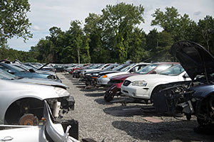 Pick-n-Pull junkyard with cars lined up over rocks